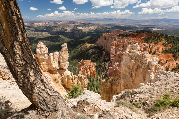 ymt-blog-bryce-canyon-rainbow-point