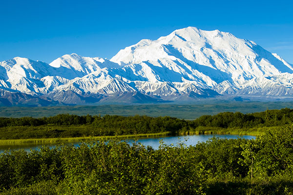 ymt-blog-things-you-did-not-know-about-denali-national-park