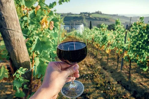 600x400-Italy-winery