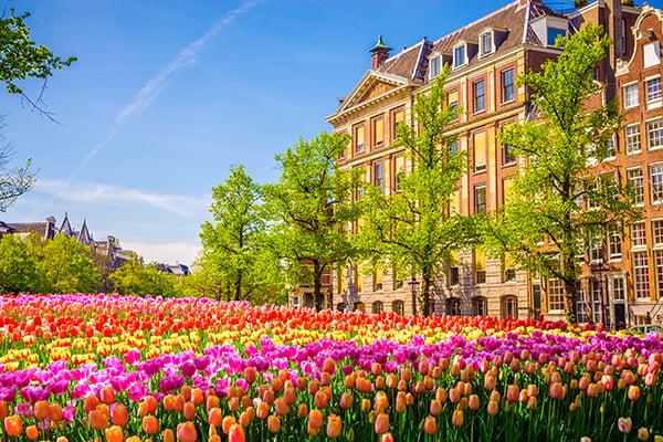 600x400-netherlands-tulips