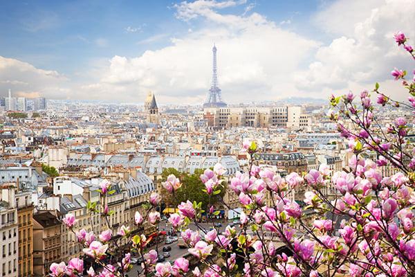 600x400-paris-france-magnolia-flowers-view
