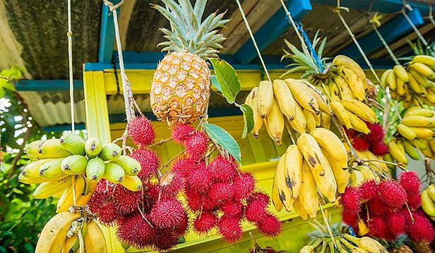 Paradise for Less: Eating on a Budget in Hawaii