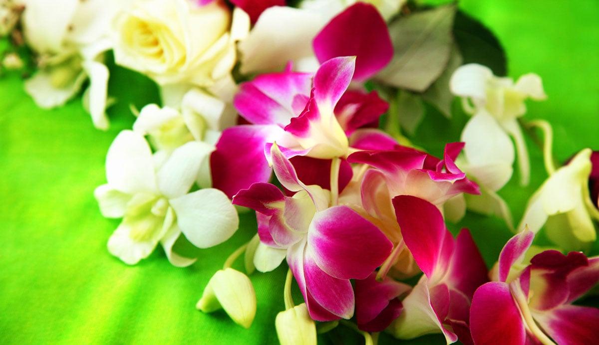Hawaiian_leiMedium-(1)