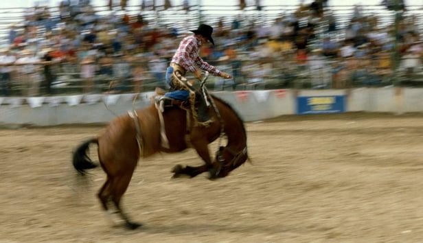 Rodeo_Medium.jpg