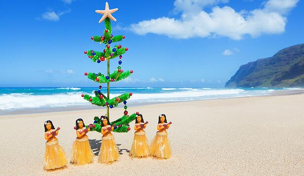 Hawaii Christmas.Christmas In Hawaii Holiday Traditions In The Sun