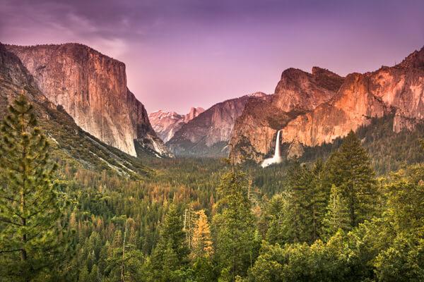 golden-california-sutters-mill-gold-rush