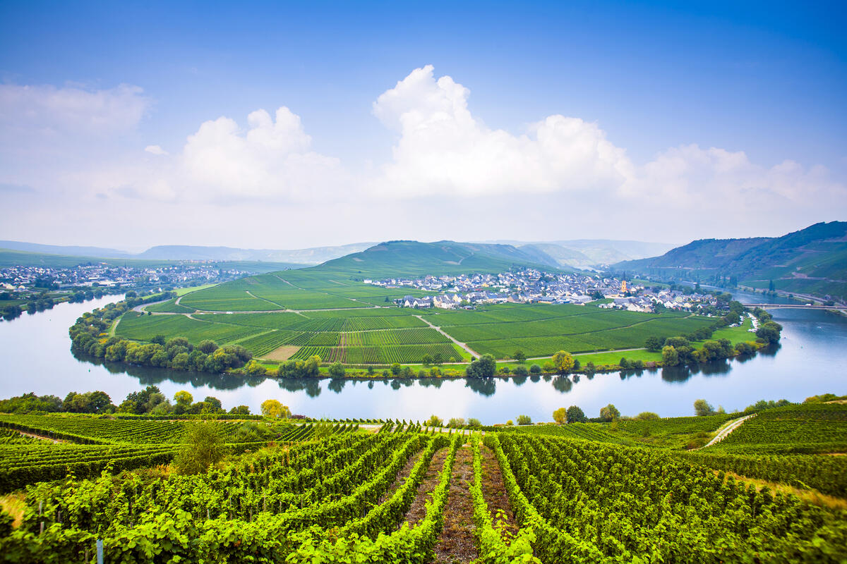 Romance on the Rhine and Moselle with YMT Vacations