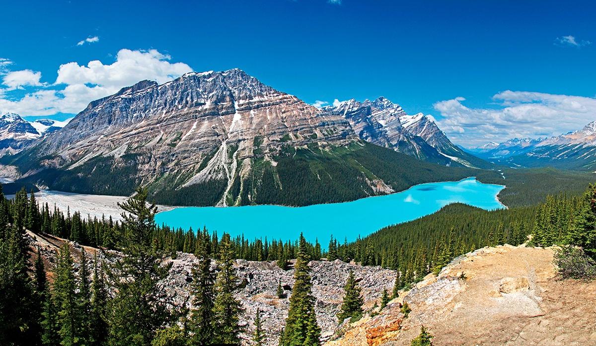 shutterstock_88404529_PeytoLake_BanffNationalPark_Alberta_Canada