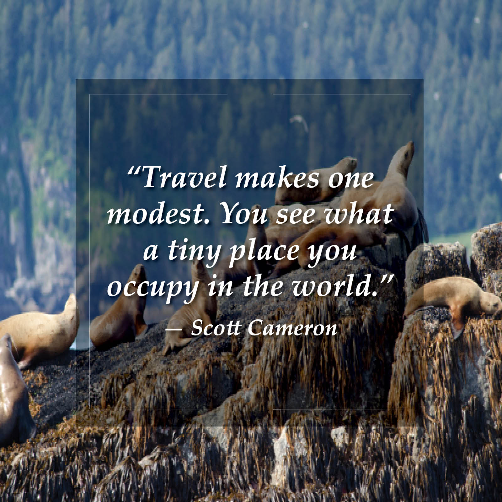 ymt-blog-wanderlust-travel-quotes-23