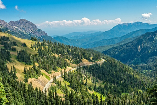 ymt-vacations-best-season-olympic-national-park